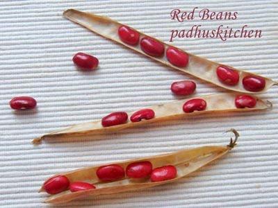 Fresh red beans