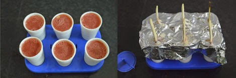 Watermelon popsicles for kids