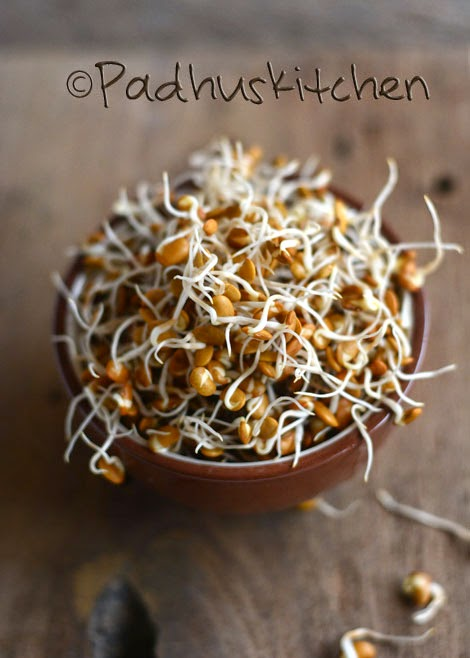 Horse gram sprouts