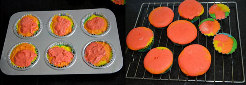 Rainbow Cupcake with Frosting