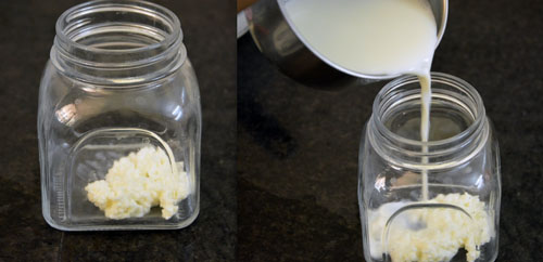 easy steps to make milk kefir using kefir grains