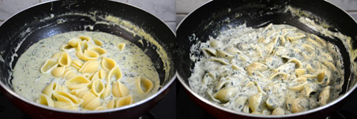 Conchiglie-Shell Pasta in creamy spinach sauce
