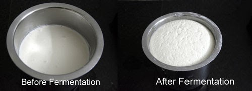 idli batter in mixer grinder